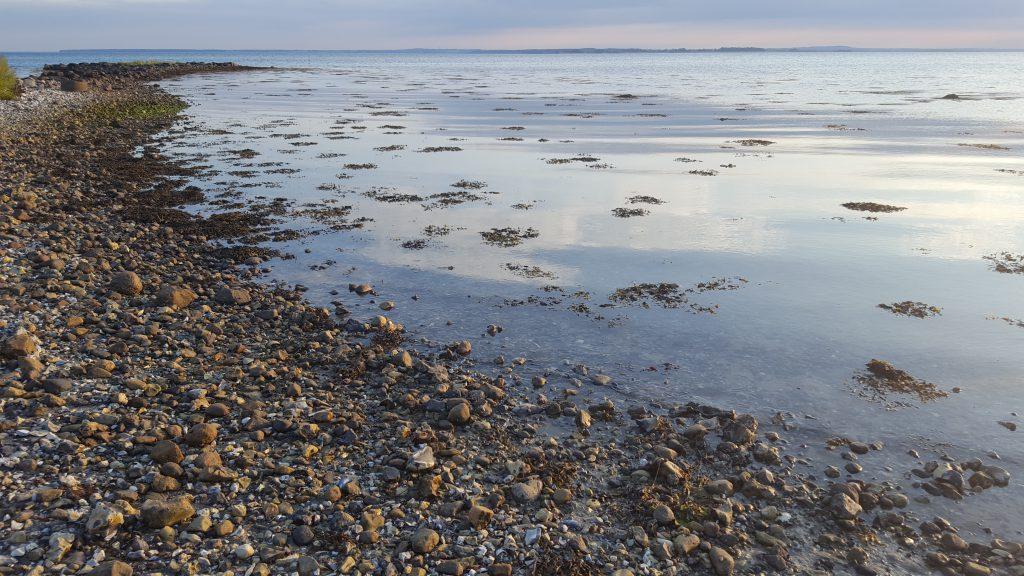 Danmark dejligst - stranden ved Gyllingnæs på en sommeraften
