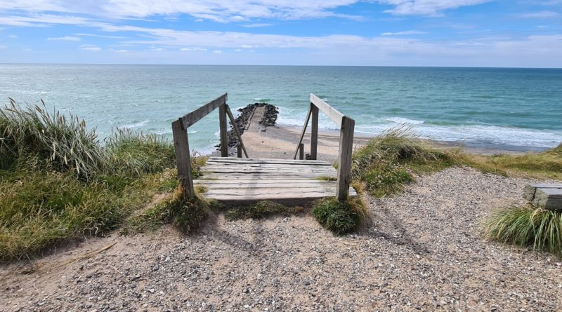 Jyllands vestkyst 2020 – trætophytter, barndomsminder og gamle venner